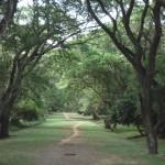 chemin cambodge